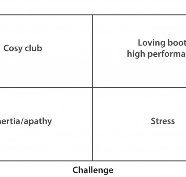 Support Challenge Matrix diagram